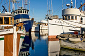 Commercial moorage in Port Townsend